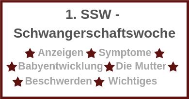 1 SSW - Erste Schwangerschaftswoche